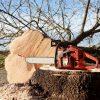 vente et entretien de matériel de jardinage à Rémalard en Perche