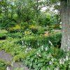 Paysagiste entretien de jardins Rémalard en Perche