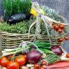Légumes et fruits bio Rémalard en Perche